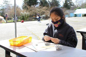 6th Grade Kylix Bowl Making